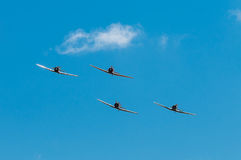Four AT-6 Texan Airplanes Line Up Royalty Free Stock Photos