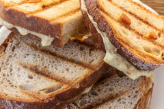 Four toast with cheese. Toasted cheese sandwiches on the grill, situated on a white plate Stock Photography