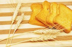 Four toast pieces and wheat Stock Images