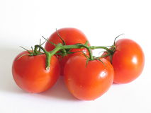 Four Tomatoes. Close-up of four red tomatoes royalty free stock photos