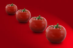 Four tomatoes Royalty Free Stock Image