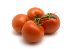 Four Tomatoes. On the vine with white background Stock Photos