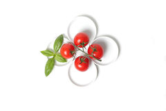 Four tomatoes  with basil leaf Stock Images