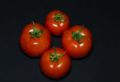 Four tomatoes Stock Photography