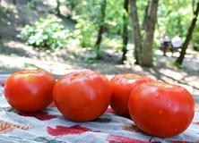 Four tomatoes Stock Photo