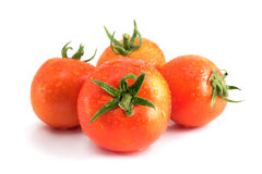 Four tomatoes with water drops. Royalty Free Stock Image