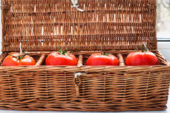 Four tomatoes in wicker retro box Stock Photography