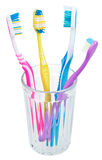 Four tooth brushes in glass Stock Image