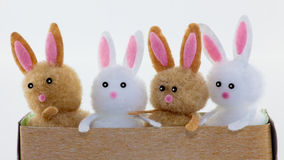 Four toy bunnies Royalty Free Stock Photo