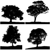 Four tree silhouette black & white colors. Stock Photo