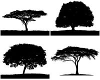 Four tree silhouette black & white colors. Stock Photography