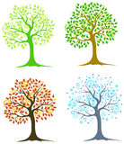 Four trees. In different seasons on a white background Royalty Free Stock Image
