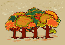 Four trees in autumn time Stock Photography