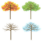 Four trees of different seasons Royalty Free Stock Photos