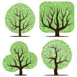 Four trees with green leaves isolated Stock Photo