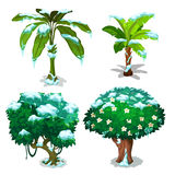 Four trees with green leaves under snow flakes. Four different trees with green leaves under snow flakes. Vector illustration on white background Stock Photography