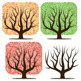 Four trees with green, red, yellow leaves and without leaves. Royalty Free Stock Photos