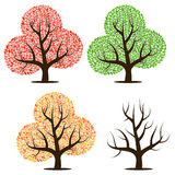 Four trees with green, red, yellow leaves and without leaves. Royalty Free Stock Photo