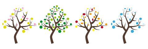 Four trees icons with leaves in spring, summer, autumn and winter vector illustration