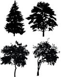 Four trees silhouettes Royalty Free Stock Photography