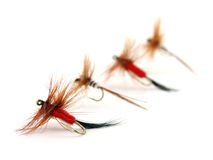 Four trout flies Royalty Free Stock Photo