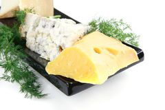 Four type of cheeses on plate Stock Photos
