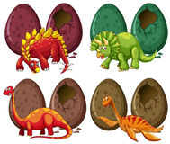 Four types of dinosaurs and eggs Stock Photography