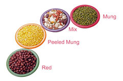 Four types of mung beans Royalty Free Stock Image