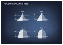 Four Types of Population Pyramids on Chalkboard Background Stock Photo