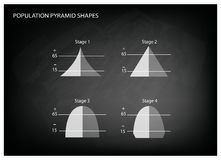 Four Types of Population Pyramids on Chalkboard Background Royalty Free Stock Images