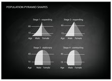 Four Types of Population Pyramids on Chalkboard Background Royalty Free Stock Photography