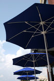 Four Umbrellas. Four blue umbrellas on patio Stock Image