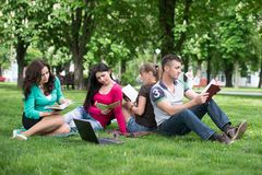 Four university students comparing their notes Royalty Free Stock Image