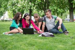 Four university students comparing their notes Stock Photo