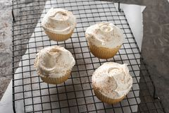 Monotone White Cupcakes on a Cooling Rack Royalty Free Stock Photography