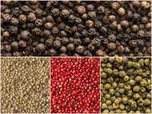 Four variations of peppercorns. Collage of various spices Royalty Free Stock Image
