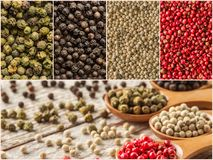 Four variations of peppercorns. Collection of spices Stock Images