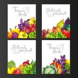 Four vertical banners with fresh fruits and vegetables Royalty Free Stock Image
