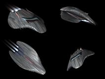 Four views of a powerful spaceship very streamline vector illustration