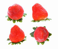 Four views of strawberry Stock Images