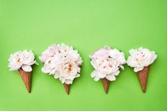 Four waffle ice cream cones with white peony flowers on green background. Summer concept. Copy space, top view. Minimalism stock photo