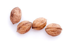 Four walnuts. On a white background Stock Photos