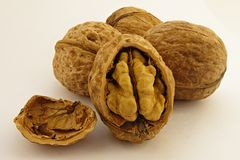 Four walnuts royalty free stock photography
