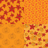 Four warm seamless pattern with floral elements Royalty Free Stock Photos