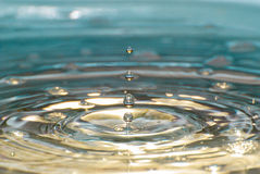 Four water drops in detail Royalty Free Stock Image