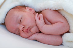 Four week old infant sleeping Stock Photos