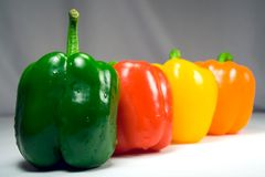 Four wet peppers closeup straight on. Four wet peppers (green, red, yellow, orange) level with the camera, full frame. Only the green pepper is in focus Royalty Free Stock Photo