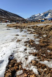 Four wheel drive cars parking area with frozen pond, snow, tourists and market with Yunthang Valley in the background in winter. Stock Photography