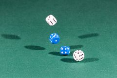 Four white and blue dices falling on a green table royalty free stock image