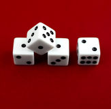 Four white dice  Royalty Free Stock Photography